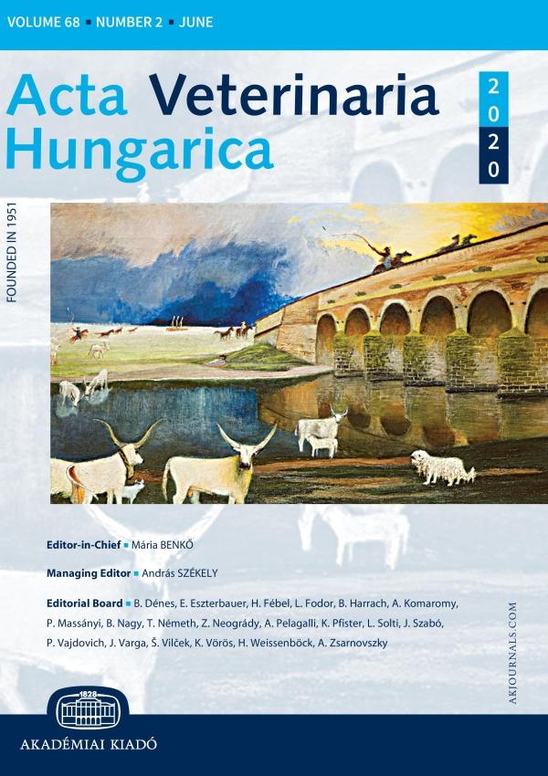 AVET cover